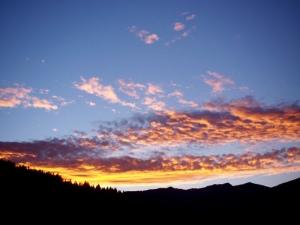 Wait 'til sunset to venture outdoors.