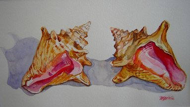 Briland-Conchs---Watercolor-(10x14)