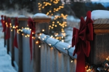 46166-White-Christmas-Lights