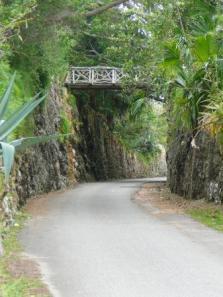 bermuda-railway-trail